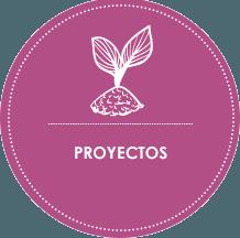 metodología be happy proyectos